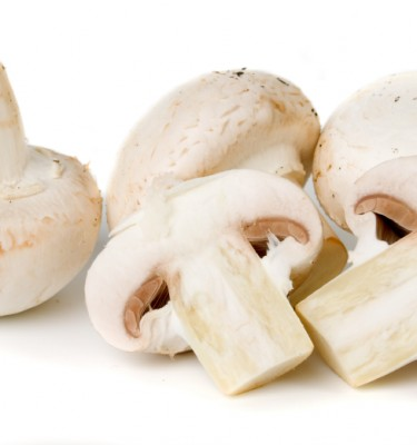 Edible button mushroom isolated on white background